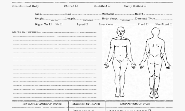 Autopsy Report Template - Zohre.horizonconsulting.co with Autopsy Report Template