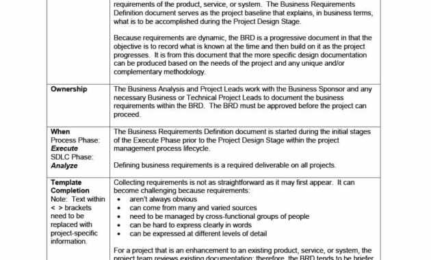 Requirements Document Example - Mahre.horizonconsulting.co with regard to Product Requirements Document Template Word